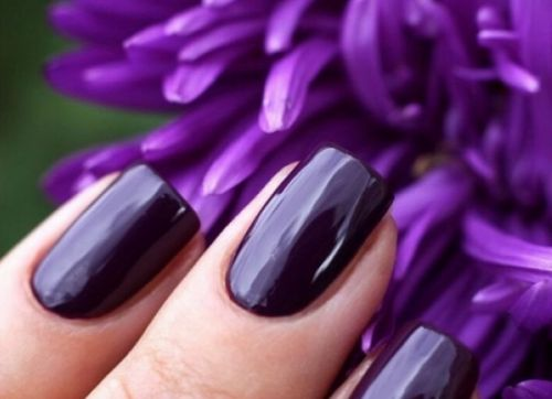 Темно фиолетовый лак с  микроблеском